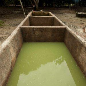 Primeiro a mandioca é colocada em tanques para fermentar por alguns dias (Foto: Mayra Galha)