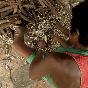 Trabalhadora de Altamira (PA) descasca mandiocas (Foto: Mayra Galha)