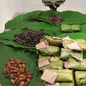 Mesa completa: das sementes fermentadas à barrinha de cacau 100%. (Foto: Antonia Padvaiskas)