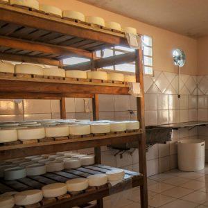 Sala de maturação da queijaria. (Foto: Mayra Galha)