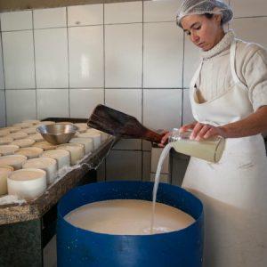 Ali, Marly mistura o pingo, que é o fermento natural do queijo... (Foto: Mayra Galha)