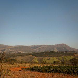 Vista da Serra da Canastra. (Foto: Mayra Galha)