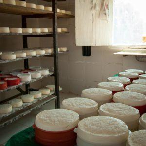 Dentro da queijaria da Luzia e do Nereu. (Foto: Mayra Galha)