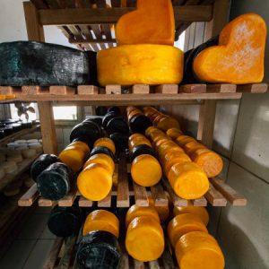 Peças resinadas descansam em sala de maturação. (Foto: Mayra Galha)